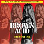 RidingEasy-Brown-Acid-First-Trip-web