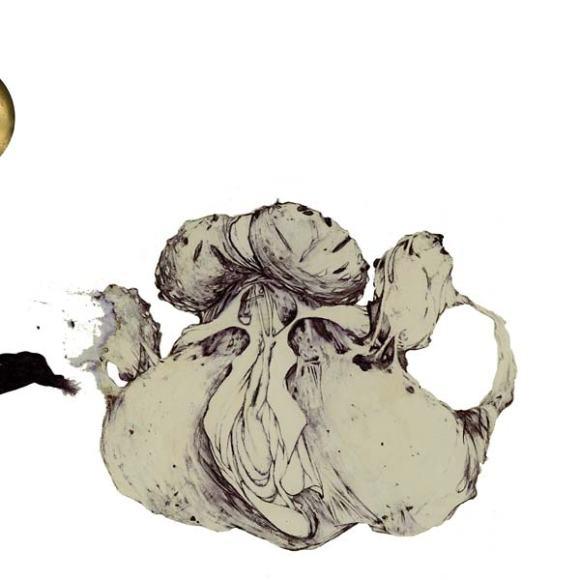 ape-of-naples