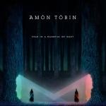 amon-tobin-fear-in-a-handful-cover